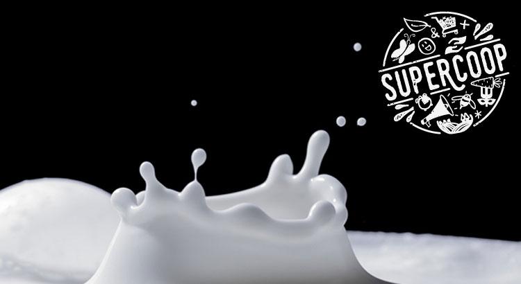 La durabilité de la filière lait en France